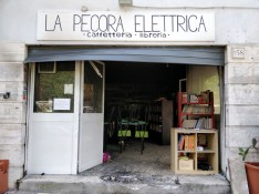 pecora-elettrica-via-facebok